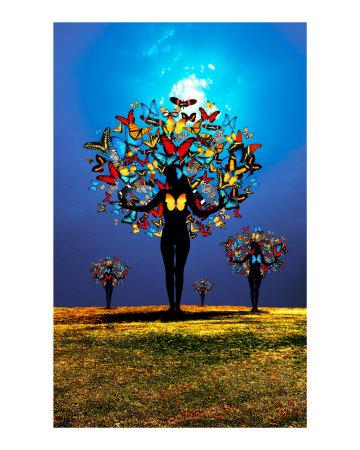 \'Butterfly Women Tree\' by David Rickerd