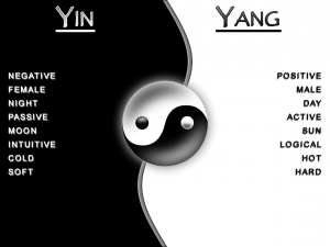 Yin & Yang ~ Shadow & Light